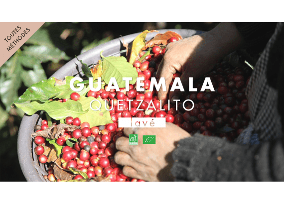 guatemala-quetzalito-bio-torrefaction-mokxa-lyon-strasbourg